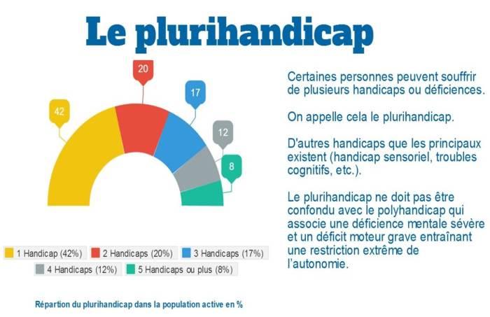 Logo plurihandicap