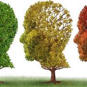 Logo maladies neurodegereratives